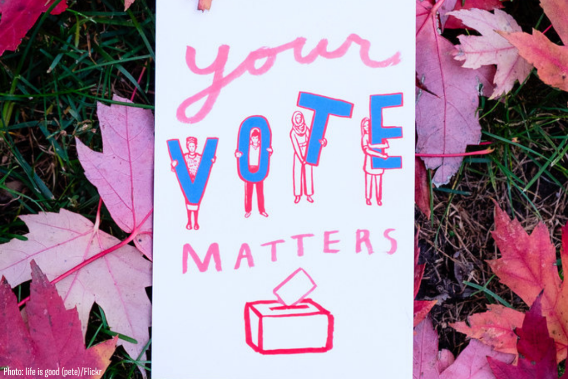"A protest sign that says ""Your Vote Matters"" against a background of red maple leaves"